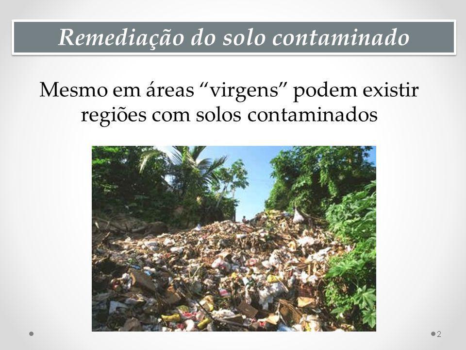 Remediação do solo contaminado Mesmo em áreas virgens podem existir regiões com solos contaminados 2