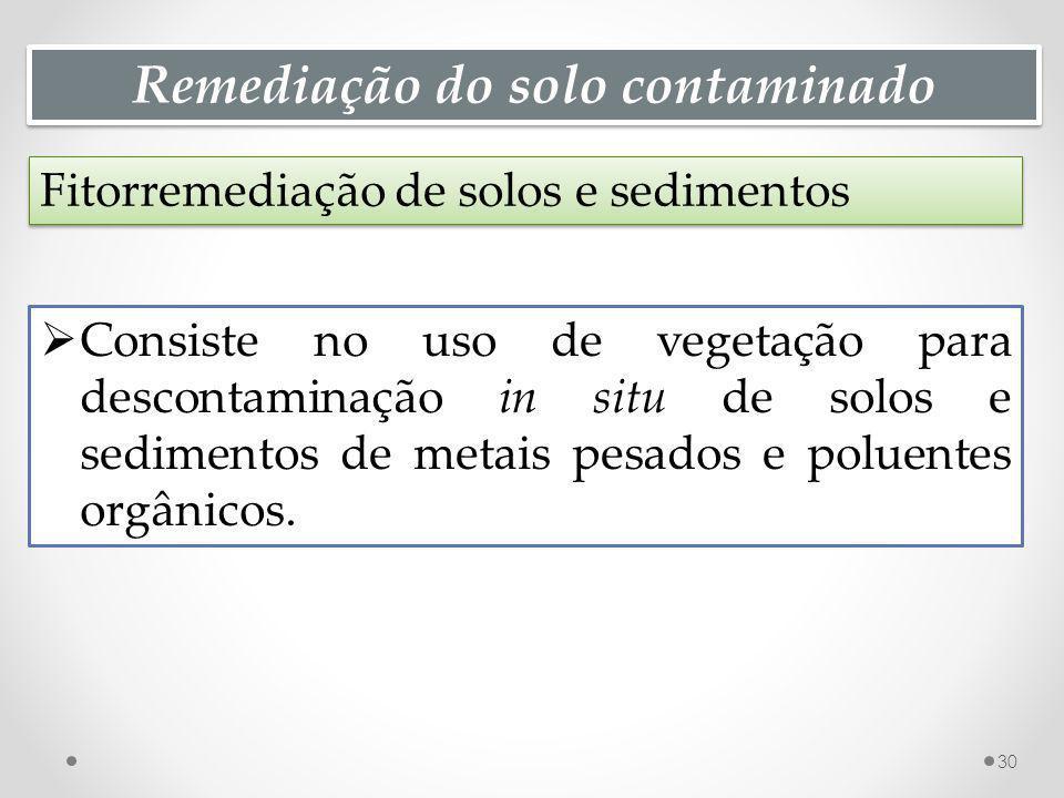 Remediação do solo contaminado Fitorremediação de solos e sedimentos 30 Consiste no uso de vegetação para descontaminação in situ de solos e sedimentos de metais pesados e poluentes orgânicos.