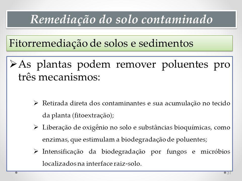Remediação do solo contaminado Fitorremediação de solos e sedimentos 31 As plantas podem remover poluentes pro três mecanismos: Retirada direta dos contaminantes e sua acumulação no tecido da planta (fitoextração); Liberação de oxigênio no solo e substâncias bioquímicas, como enzimas, que estimulam a biodegradação de poluentes; Intensificação da biodegradação por fungos e micróbios localizados na interface raiz-solo.