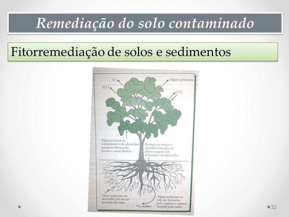 Remediação do solo contaminado Fitorremediação de solos e sedimentos 32