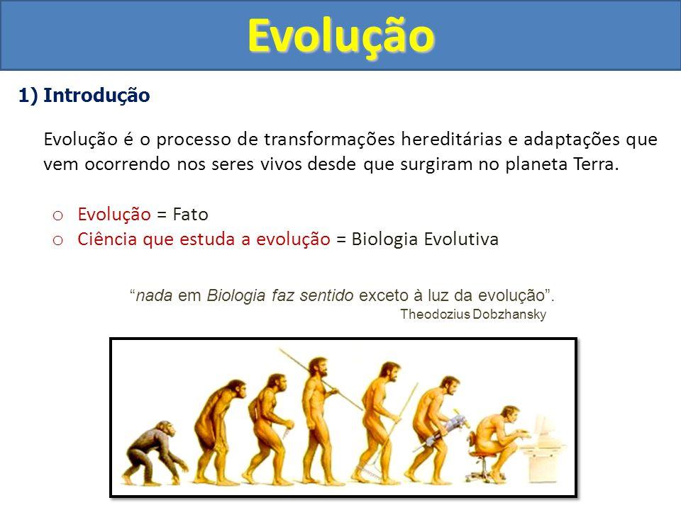 2) Fixismo (Criacionismo) Até o século XVIII o Todos os seres vivos foram criados por um ser supremo Deus.