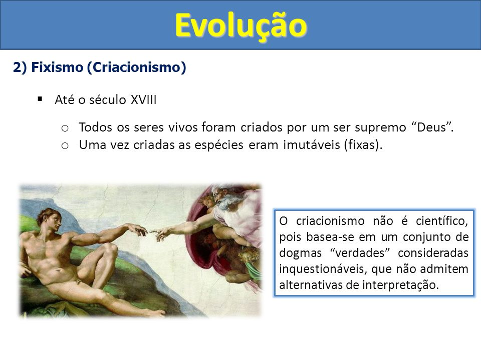5) Neodarwinismo (Teoria Sintética da Evolução) 1930 o Conta com a contribuição de vários cientistas de todo o mundo.