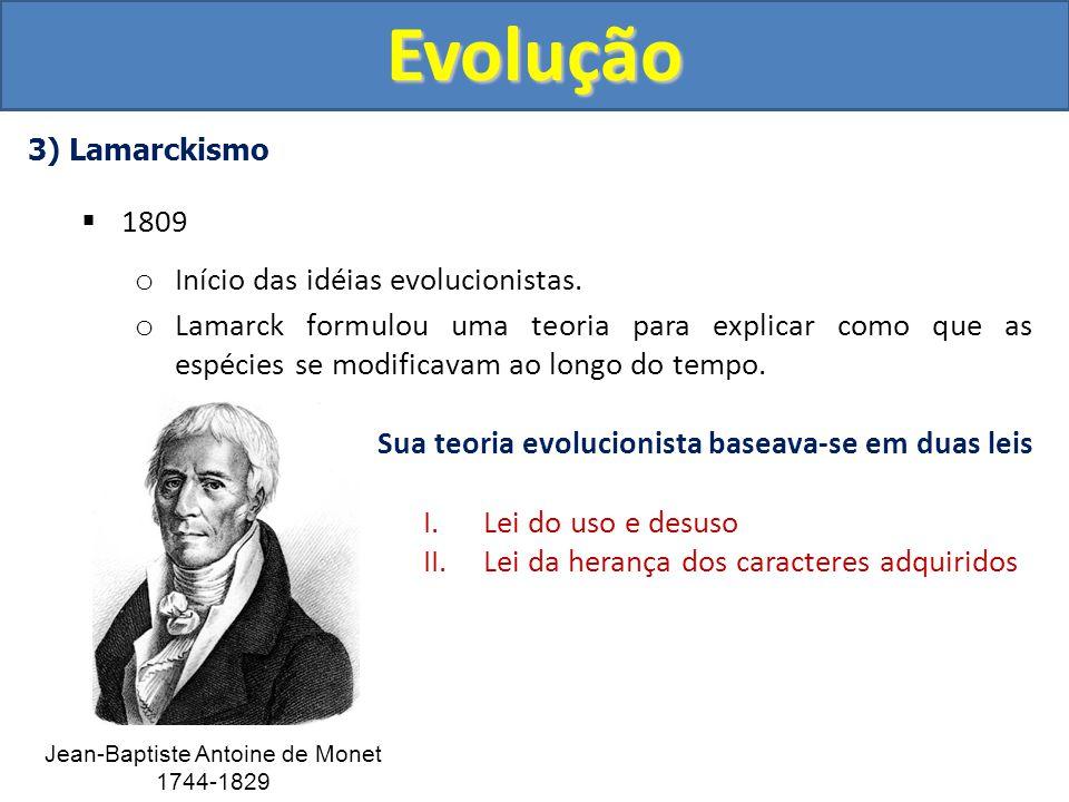 5) Neodarwinismo (Teoria Sintética da Evolução) Pontos básicos o As variações nas espécies dependem de mutações nos genes.