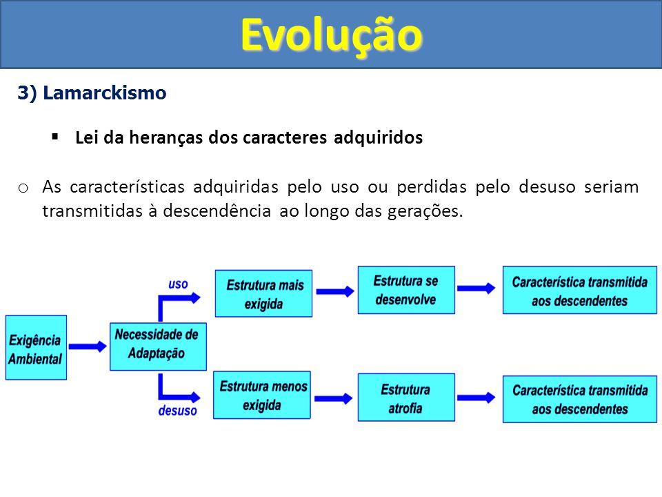3) Lamarckismo Exemplificando a teoria de LamarckEvolução I.As girafas ancestrais possuíam o pescoço curto.