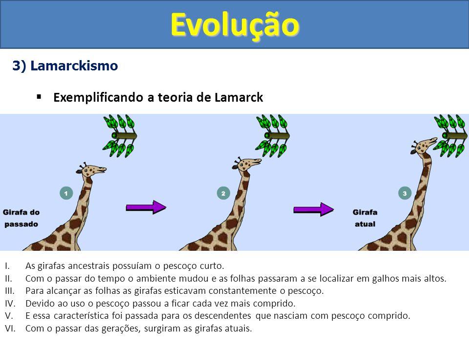 3) Lamarckismo Erros de Lamarck I.Hoje sabemos que somente modificações a nível de gametas são transmitidas aos descendentes.