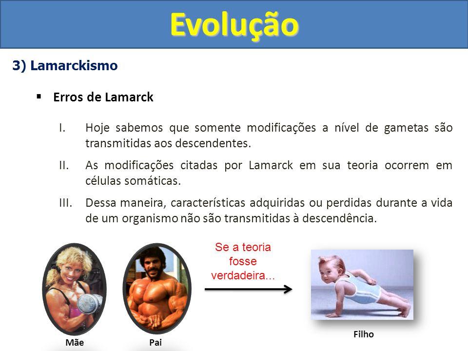 Questão UFMG 2009Evolução Resposta: Os organismos que apresentam relações evolutivas possuem ancestralidade comum e segue o padrão cladogênico do Esquema II.