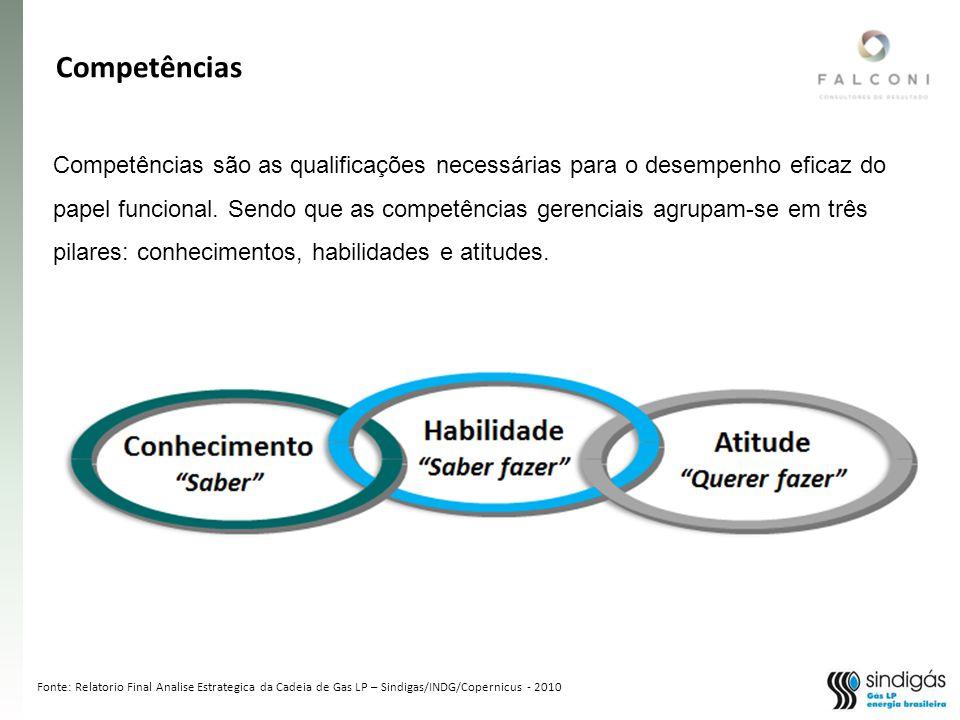 Fonte: Relatorio Final Analise Estrategica da Cadeia de Gas LP – Sindigas/INDG/Copernicus - 2010 Competências são as qualificações necessárias para o desempenho eficaz do papel funcional.