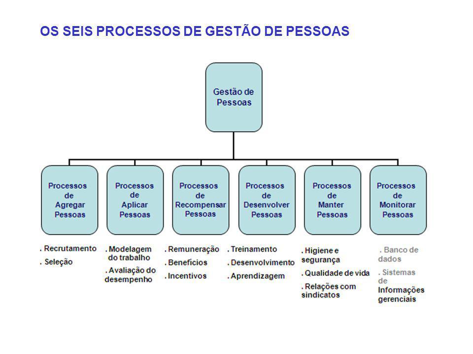OS SEIS PROCESSOS DE GESTÃO DE PESSOAS