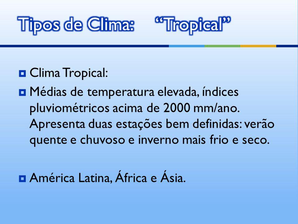 Clima Tropical: Médias de temperatura elevada, índices pluviométricos acima de 2000 mm/ano.