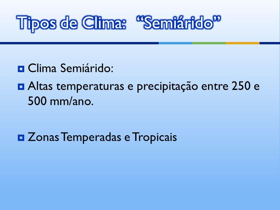 Clima Semiárido: Altas temperaturas e precipitação entre 250 e 500 mm/ano.