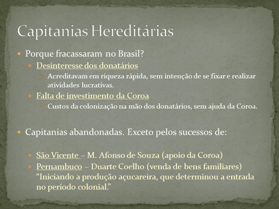 Porque fracassaram no Brasil? Desinteresse dos donatários Acreditavam em riqueza rápida, sem intenção de se fixar e realizar atividades lucrativas. Fa