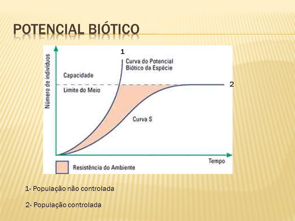 Fase A: crescimento lento, fase de adaptação da população ao ambiente, também chamada de fase lag.