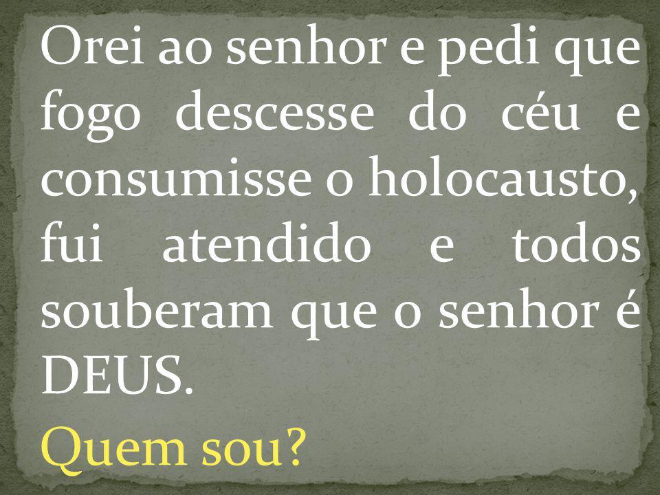Orei ao senhor e pedi que fogo descesse do céu e consumisse o holocausto, fui atendido e todos souberam que o senhor é DEUS. Quem sou?