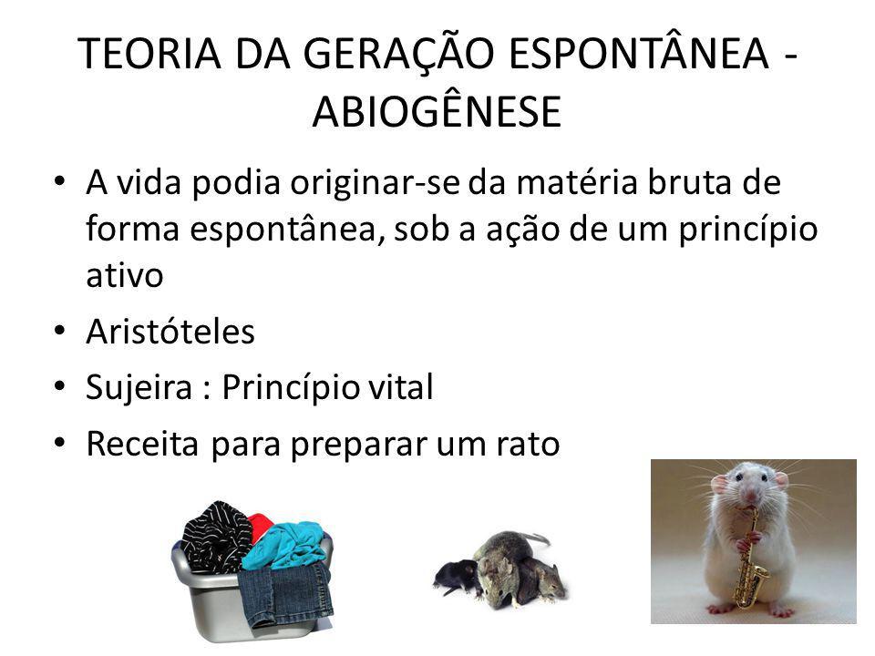 TEORIA DA GERAÇÃO ESPONTÂNEA - ABIOGÊNESE A vida podia originar-se da matéria bruta de forma espontânea, sob a ação de um princípio ativo Aristóteles Sujeira : Princípio vital Receita para preparar um rato