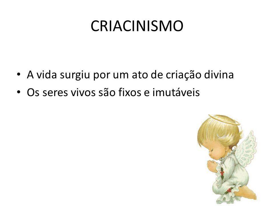 CRIACINISMO A vida surgiu por um ato de criação divina Os seres vivos são fixos e imutáveis