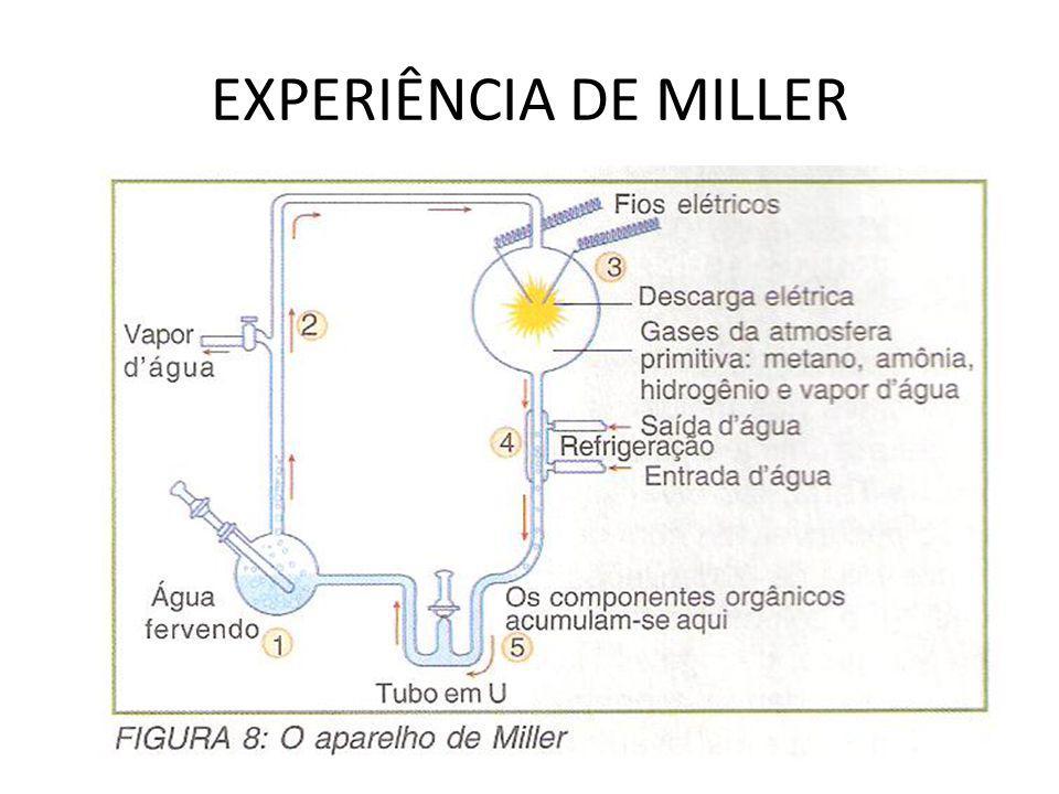 EXPERIÊNCIA DE MILLER