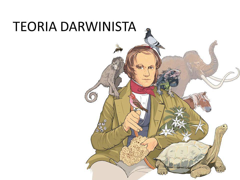 TEORIA DARWINISTA