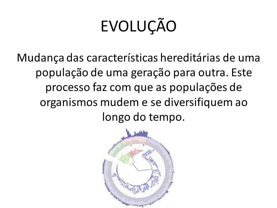 EVOLUÇÃO Mudança das características hereditárias de uma população de uma geração para outra. Este processo faz com que as populações de organismos mu