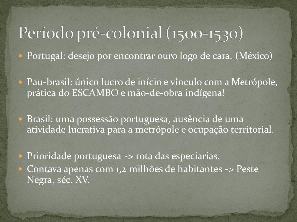 Portugal: desejo por encontrar ouro logo de cara. (México) Pau-brasil: único lucro de início e vínculo com a Metrópole, prática do ESCAMBO e mão-de-ob