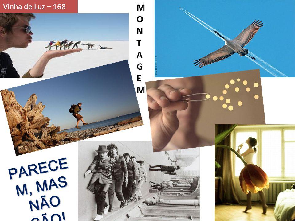 Vinha de Luz – 168 MONTAGEMMONTAGEM PARECE M, MAS NÃO SÃO!