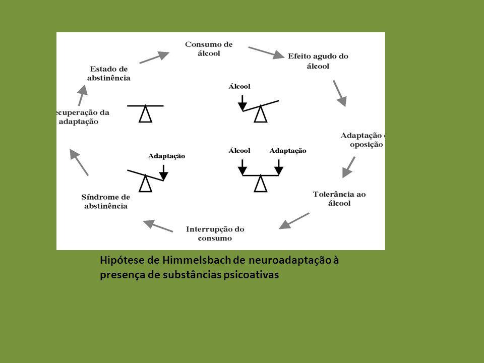 Hipótese de Himmelsbach de neuroadaptação à presença de substâncias psicoativas