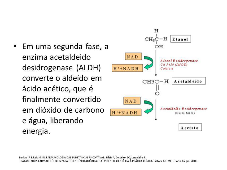Em uma segunda fase, a enzima acetaldeido desidrogenase (ALDH) converte o aldeído em ácido acético, que é finalmente convertido em dióxido de carbono