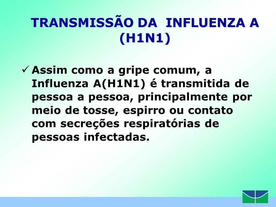 www.themegallery.com TRANSMISSÃO DA INFLUENZA A (H1N1) Assim como a gripe comum, a Influenza A(H1N1) é transmitida de pessoa a pessoa, principalmente por meio de tosse, espirro ou contato com secreções respiratórias de pessoas infectadas.