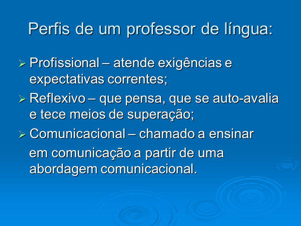 Perfis de um professor de língua: Profissional – atende exigências e expectativas correntes; Profissional – atende exigências e expectativas correntes