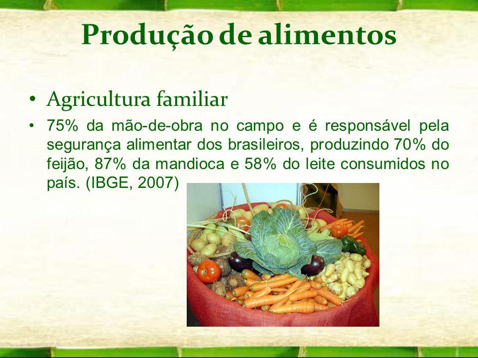 Produção de alimentos Agricultura familiar 75% da mão-de-obra no campo e é responsável pela segurança alimentar dos brasileiros, produzindo 70% do fei