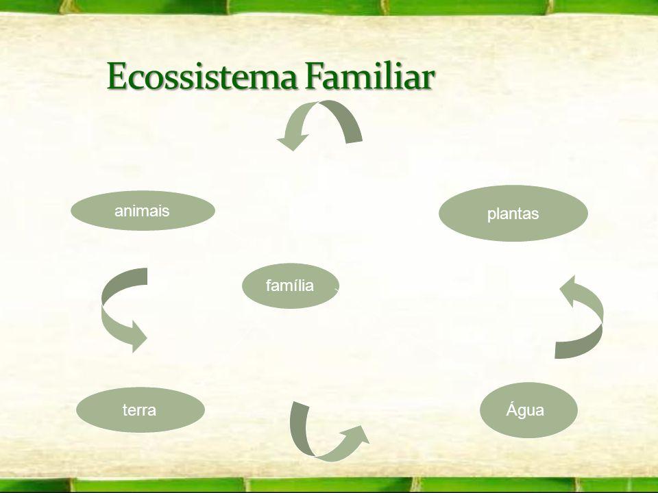 família plantas Água terra animais