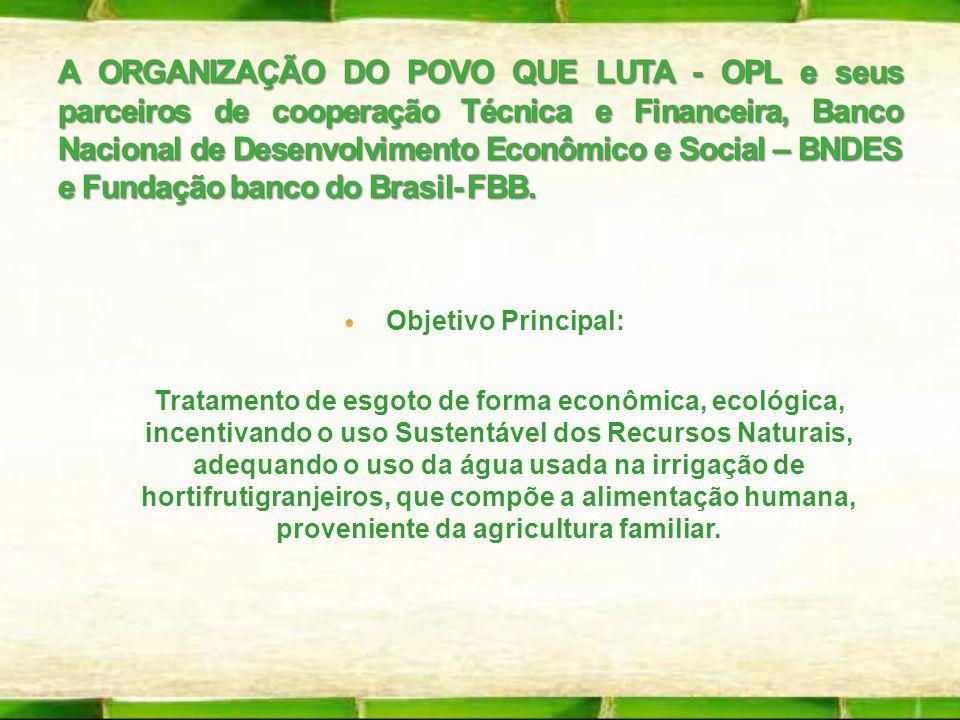 Objetivo Principal: Objetivo Principal: Tratamento de esgoto de forma econômica, ecológica, incentivando o uso Sustentável dos Recursos Naturais, adeq