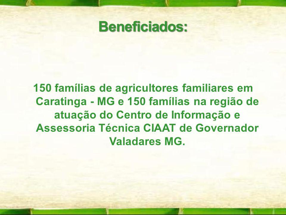 150 famílias de agricultores familiares em Caratinga - MG e 150 famílias na região de atuação do Centro de Informação e Assessoria Técnica CIAAT de Go