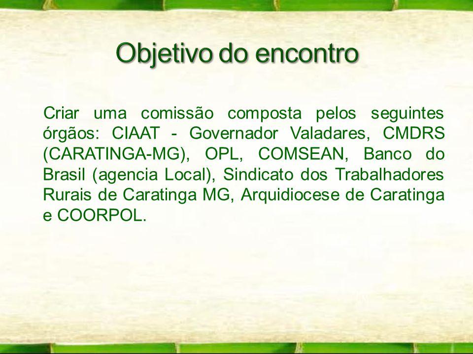 Criar uma comissão composta pelos seguintes órgãos: CIAAT - Governador Valadares, CMDRS (CARATINGA-MG), OPL, COMSEAN, Banco do Brasil (agencia Local),
