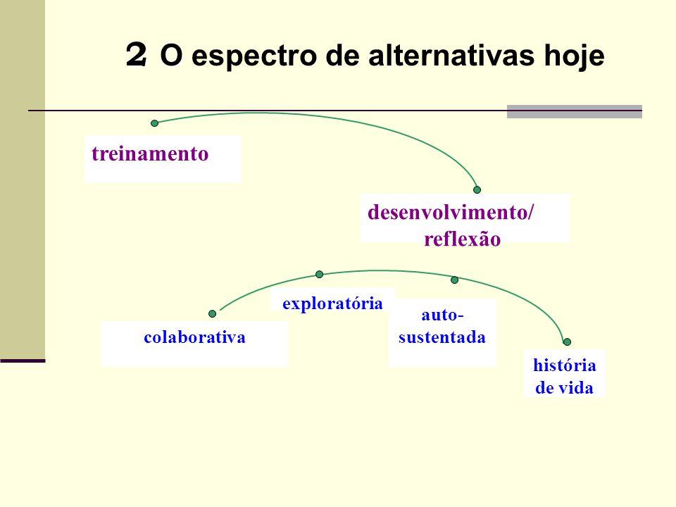 2 O 2 O espectro de alternativas hoje desenvolvimento/ reflexão colaborativa exploratória auto- sustentada história de vida treinamento