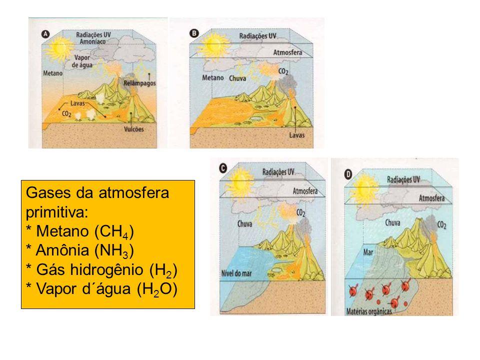 Gases da atmosfera primitiva: * Metano (CH 4 ) * Amônia (NH 3 ) * Gás hidrogênio (H 2 ) * Vapor d´água (H 2 O)
