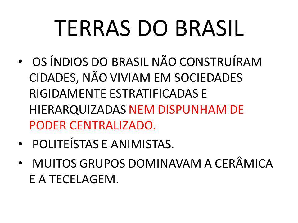 TERRAS DO BRASIL OS ÍNDIOS DO BRASIL NÃO CONSTRUÍRAM CIDADES, NÃO VIVIAM EM SOCIEDADES RIGIDAMENTE ESTRATIFICADAS E HIERARQUIZADAS NEM DISPUNHAM DE PO