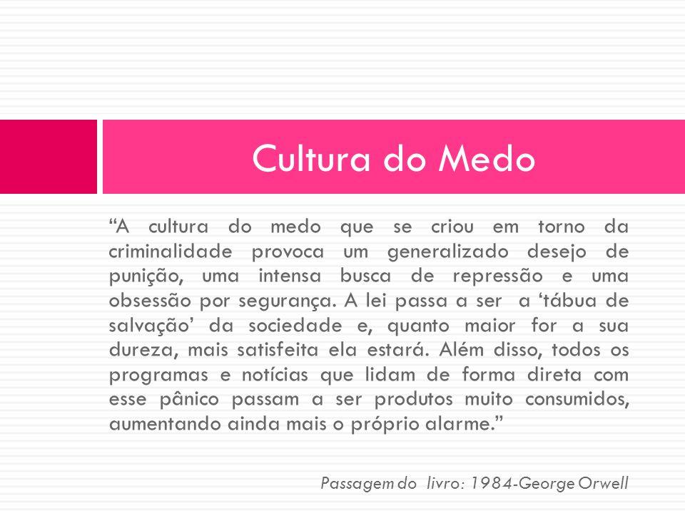 A cultura do medo que se criou em torno da criminalidade provoca um generalizado desejo de punição, uma intensa busca de repressão e uma obsessão por