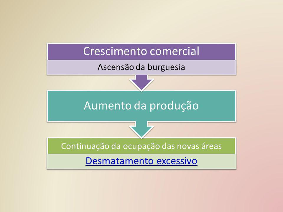 Continuação da ocupação das novas áreas Desmatamento excessivo Aumento da produção Crescimento comercial Ascensão da burguesia