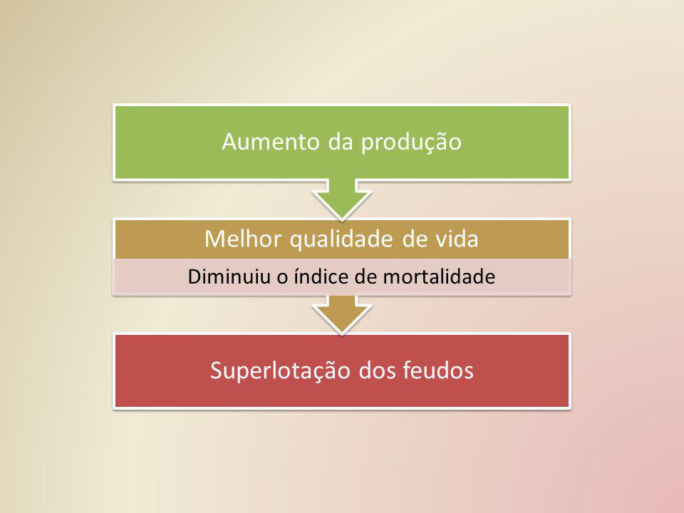 Superlotação dos feudos Melhor qualidade de vida Diminuiu o índice de mortalidade Aumento da produção