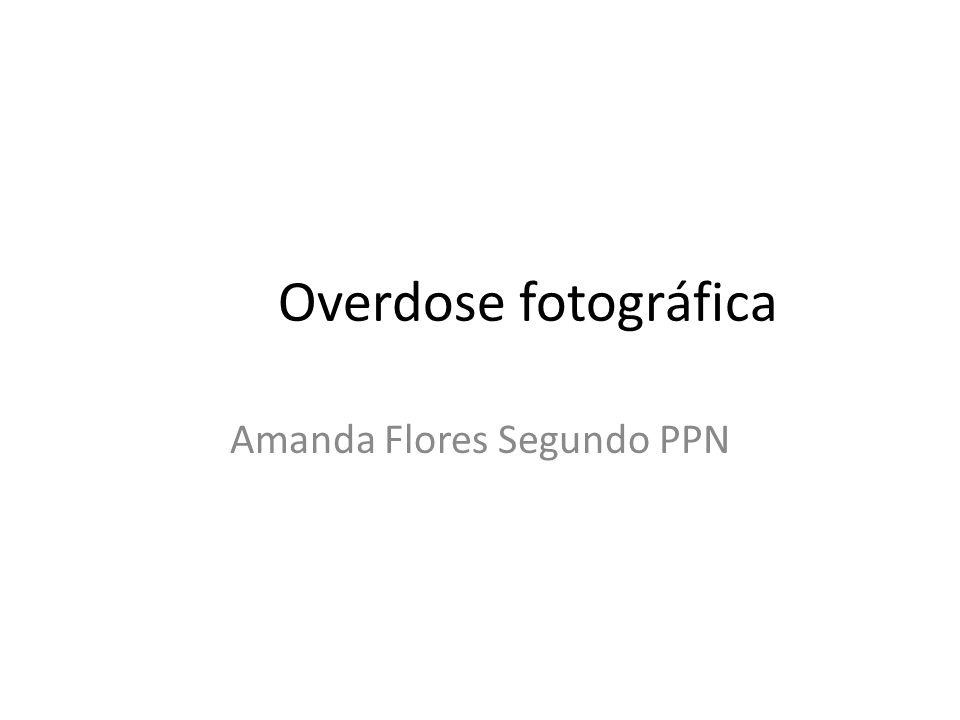 Overdose fotográfica Amanda Flores Segundo PPN