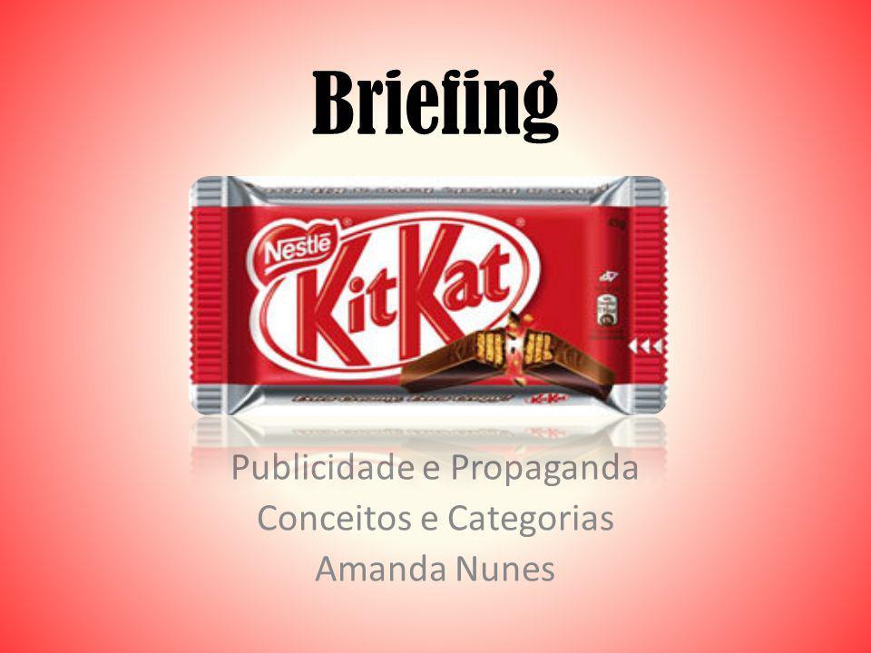 Briefing Publicidade e Propaganda Conceitos e Categorias Amanda Nunes