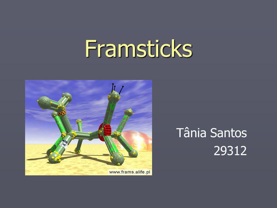 Framsticks Tânia Santos 29312
