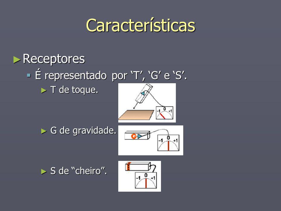 Características Receptores Receptores É representado por T, G e S. É representado por T, G e S. T de toque. T de toque. G de gravidade. G de gravidade