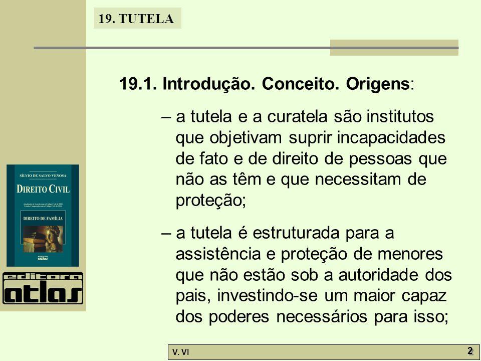 19.TUTELA V. VI 2 2 19.1. Introdução. Conceito.