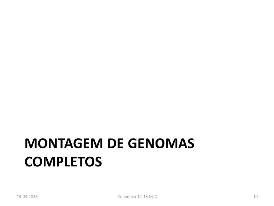 MONTAGEM DE GENOMAS COMPLETOS 18-03-2013Genómica 12-13 MJC10