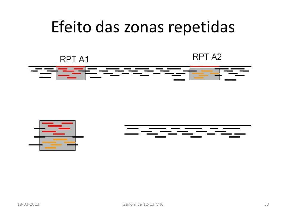 Efeito das zonas repetidas 18-03-2013Genómica 12-13 MJC30