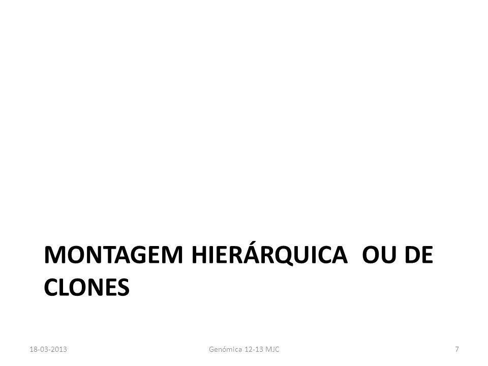 MONTAGEM HIERÁRQUICA OU DE CLONES 18-03-2013Genómica 12-13 MJC7