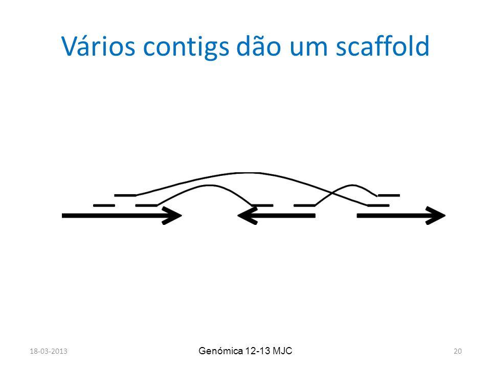 Vários contigs dão um scaffold 18-03-2013 Genómica 12-13 MJC 20