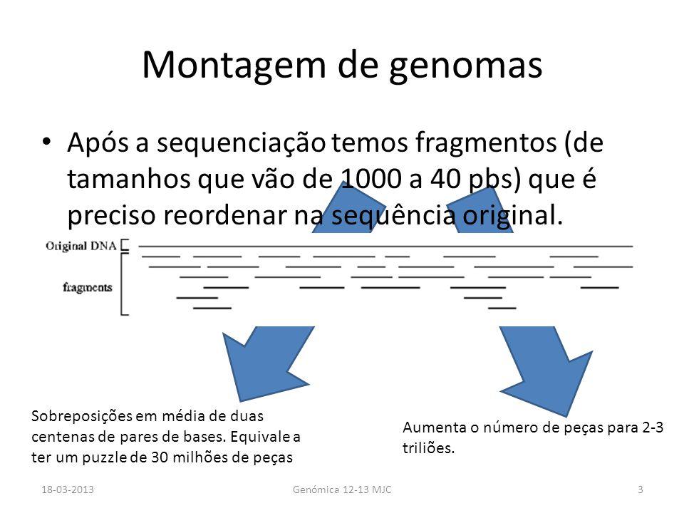 Algumas das peças… Faltam – Problemas na construção das bibliotecas – Problemas com a amplificação por PCR Têm erros – Zonas repetitivas – Erros no PCR 18-03-2013Genómica 12-13 MJC4 Aumentamos o nº de vezes que cada peça é sequenciada.
