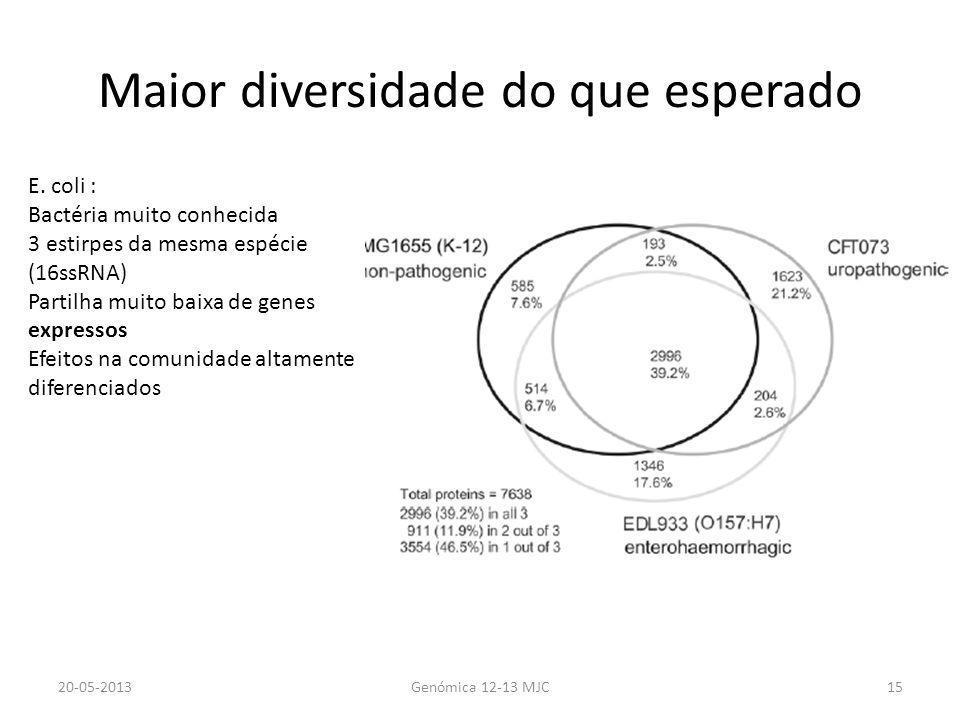 Maior diversidade do que esperado 20-05-2013Genómica 12-13 MJC15 E. coli : Bactéria muito conhecida 3 estirpes da mesma espécie (16ssRNA) Partilha mui